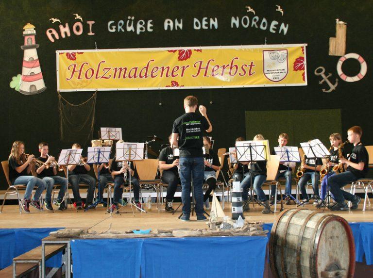 Vorstufenorchester beim HH 2015, Leitung: Simon Spittel
